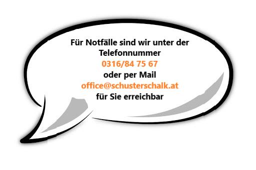 Schuster Schalk GmbH*